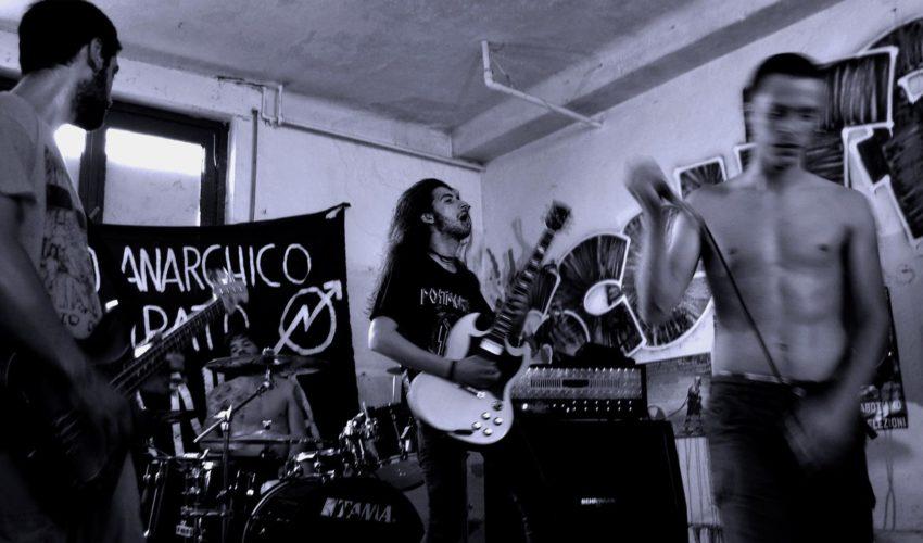 ZO Live